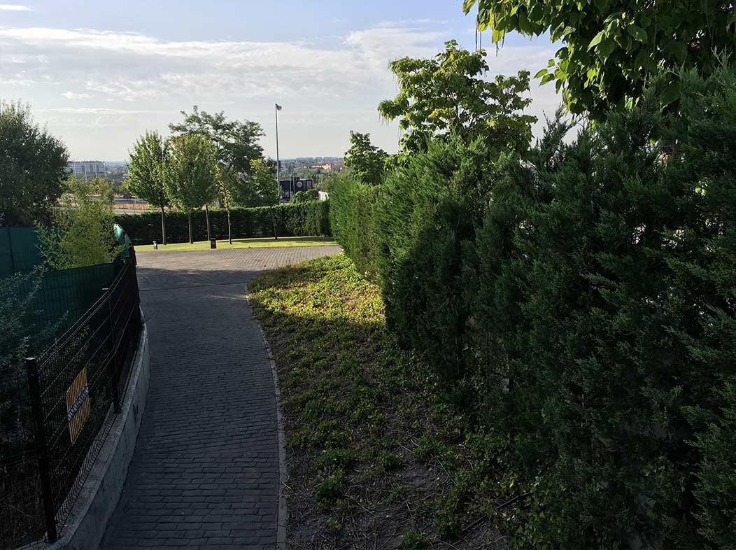 Mantenimiento de jardines hydroflora servicios para comunidades en valladolid - Mantenimiento de jardines ...
